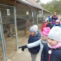 Išvyka į Gyvūnų globos draugiją